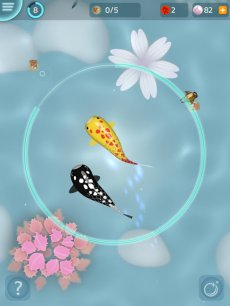 Zen Koi - Breed & Collect Fish